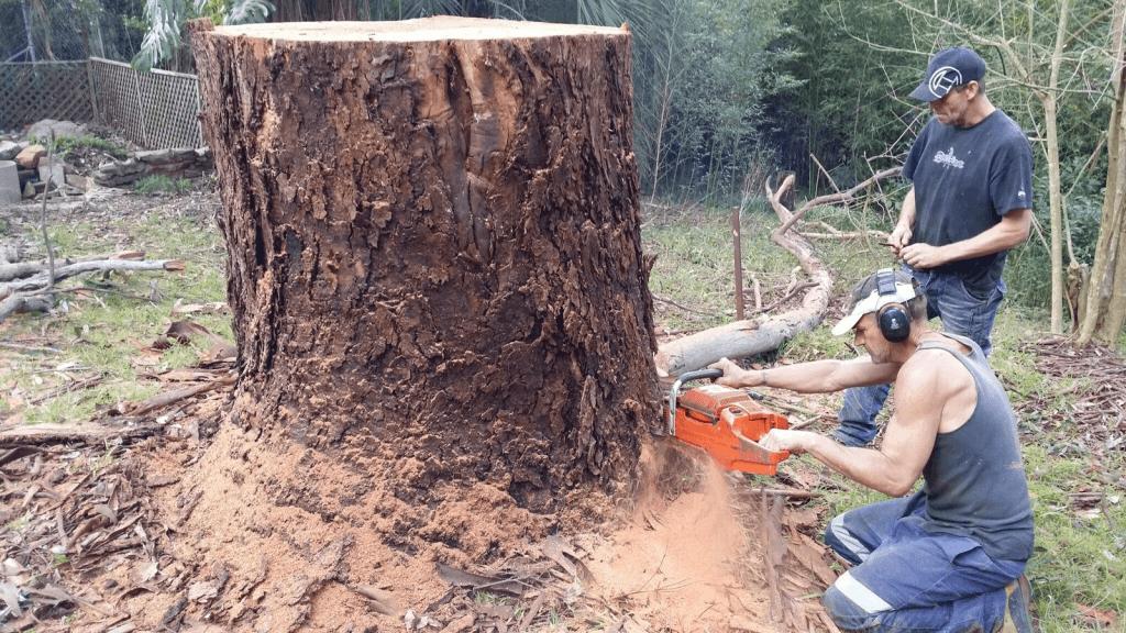 stump removal pymble
