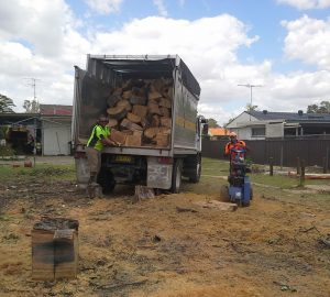 tree removal pymble