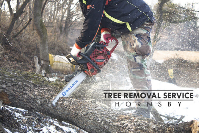 Tree Removal Service Hornsby