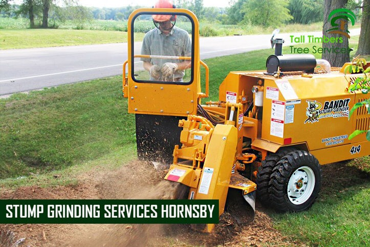 Stump Grinding Services Hornsby