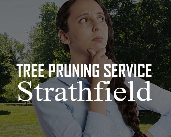 Tree pruning service Strathfield