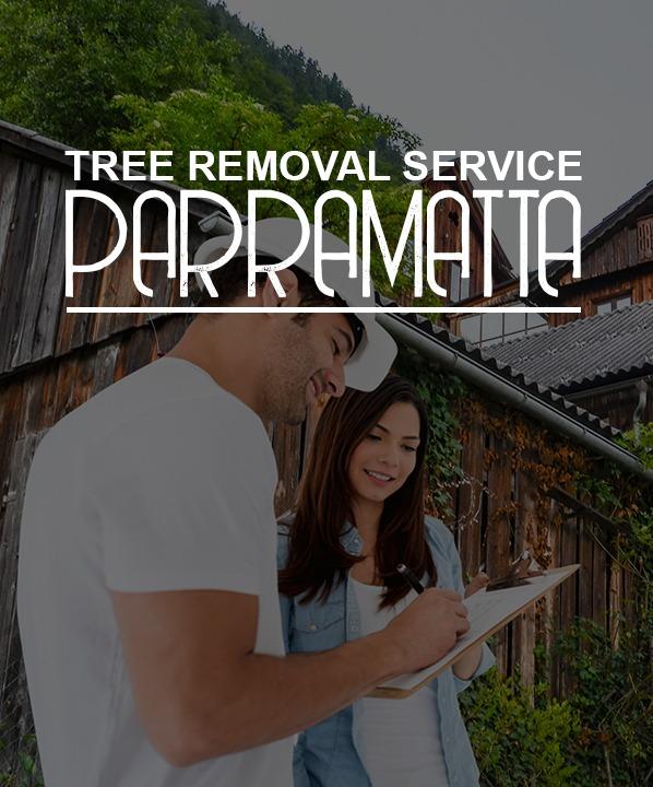 tree removal service Parramatta