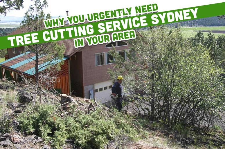 tree-cutting-service-sydney