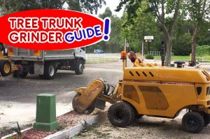 tree-trunk-grinder