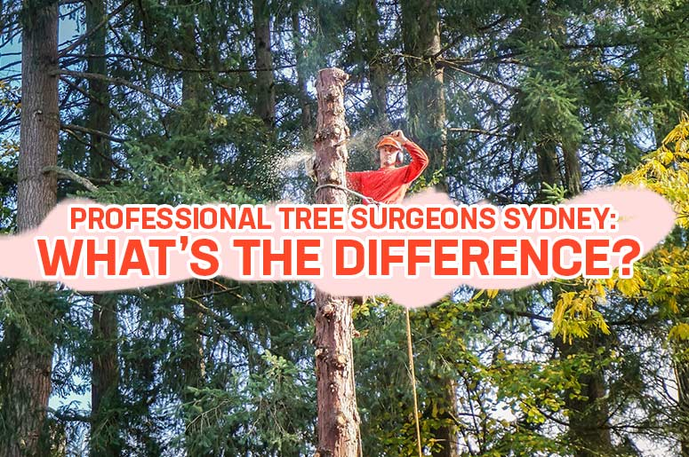 Professional-Tree-Surgeons-Sydney