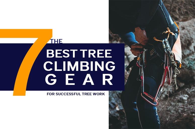Best Tree Climbing Gear